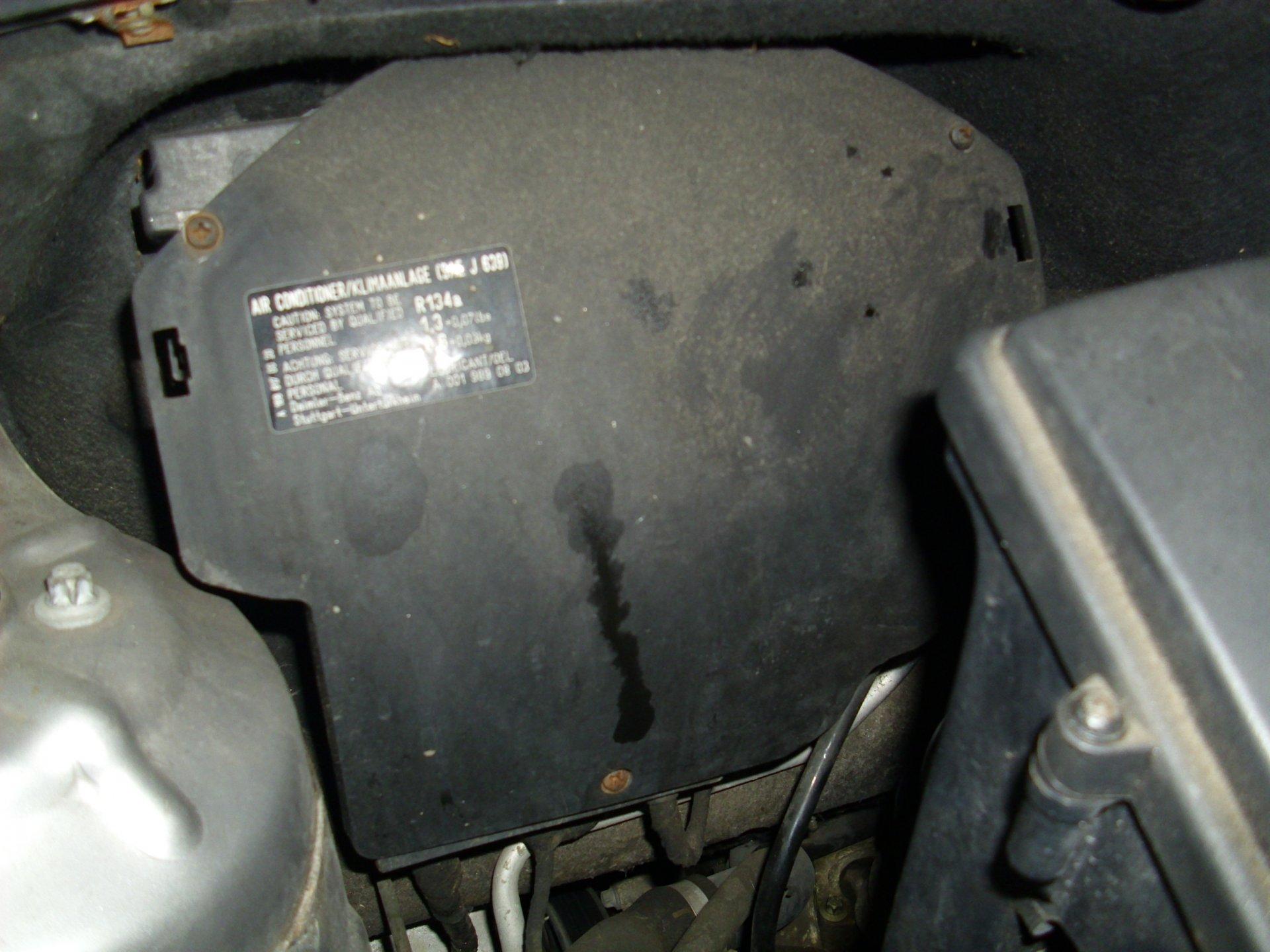 DSCI0043.JPG